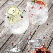 Clarity Gin & Tonic